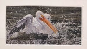 Woodson Art Museum Birds in Art Exhibit in Wausau