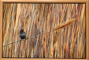 Enjoy Wausau's Artrageous Weekend and the Birds in Art Exhibit at the Woodson Art Museum